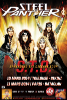 Referendum 2014 Small-20140311-steelpanther-fly
